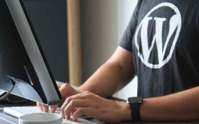 Beginner's Guide To WordPress Website Backups