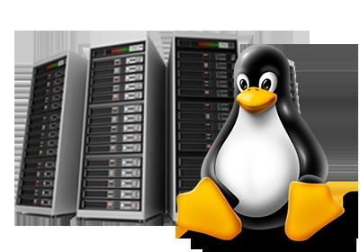 Linux hosting logo